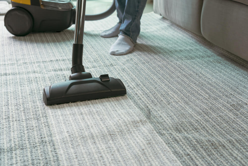 Clean strip of carpet after using a portable carpet cleaner rental machine