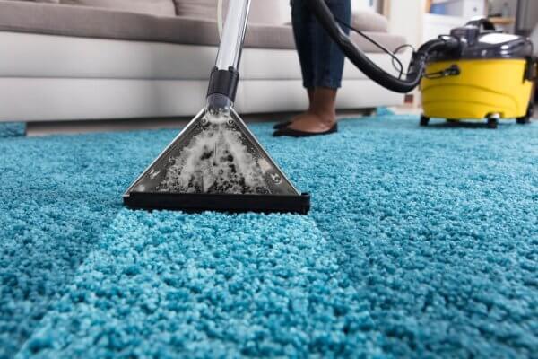 Stop & Shop Carpet Cleaner Rental Policy: Costs, Rug Doctor Models, etc