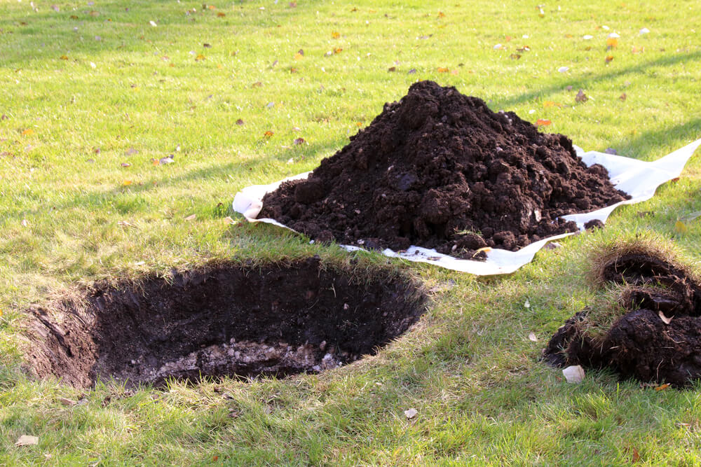 Where Can I Dump Dirt for Free? Answered